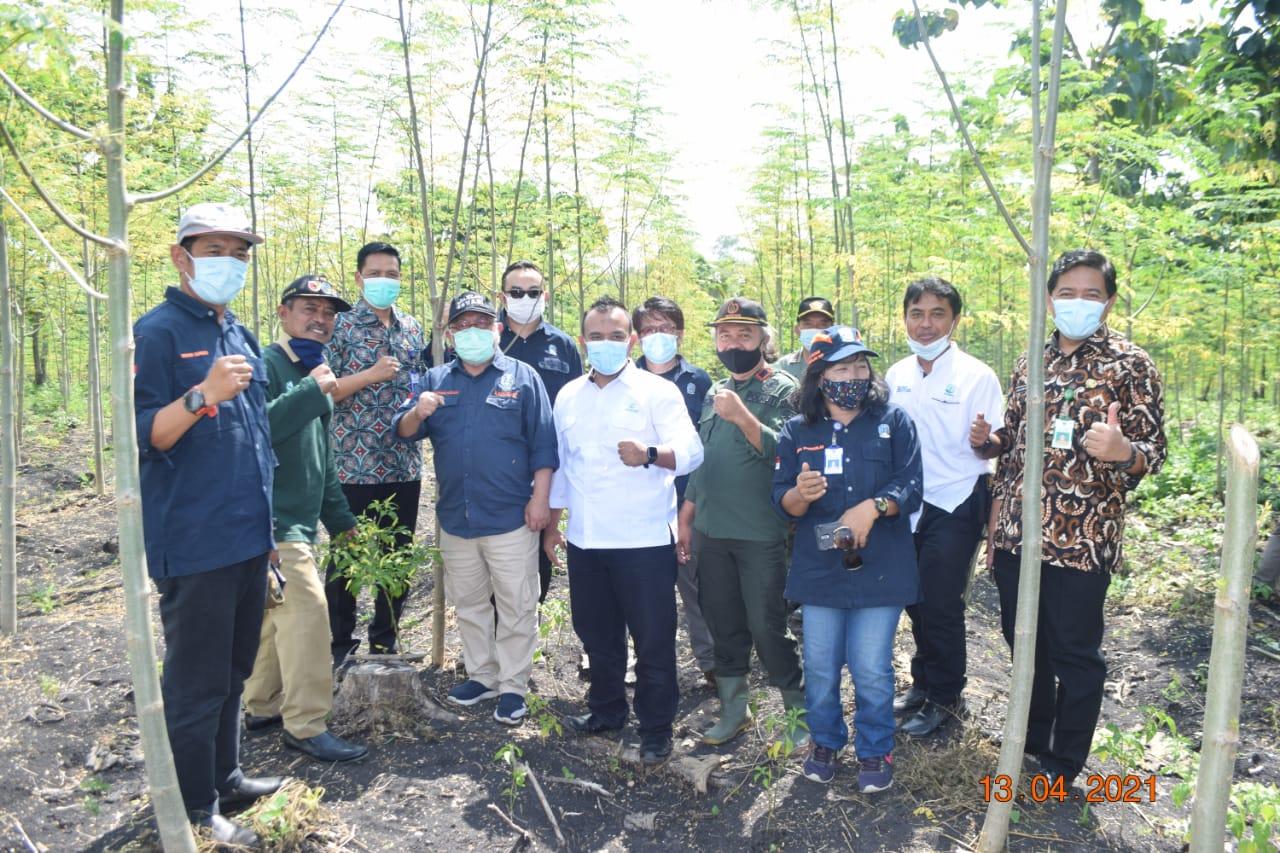 Perhutani Bersama Kadishut Provinsi Jatim Dan LMDH Ngudi Lestari Panen Daun Kelor